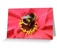 Busy.Busy Bumble Bee. Greeting Card