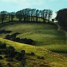Meldon, Okehampton,Devon by Squealia