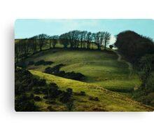Meldon, Okehampton,Devon Canvas Print