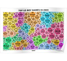 Top US Boy Names in 2001 - White Poster