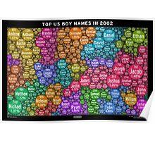 Top US Boy Names in 2002 - Black Poster