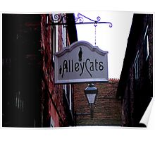 Alley Cats! Poster
