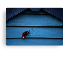 Butterfly & Blue Canvas Print