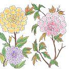 Peony Flowers by Devi Senthil