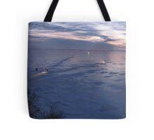 Lake Winnie Tote Bag
