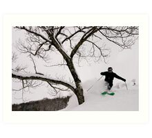 Hakuba Tree Art Print