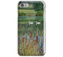 Swans On A Mennonite Farm iPhone Case/Skin