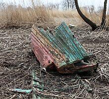 old ship the shipwreck by mrivserg