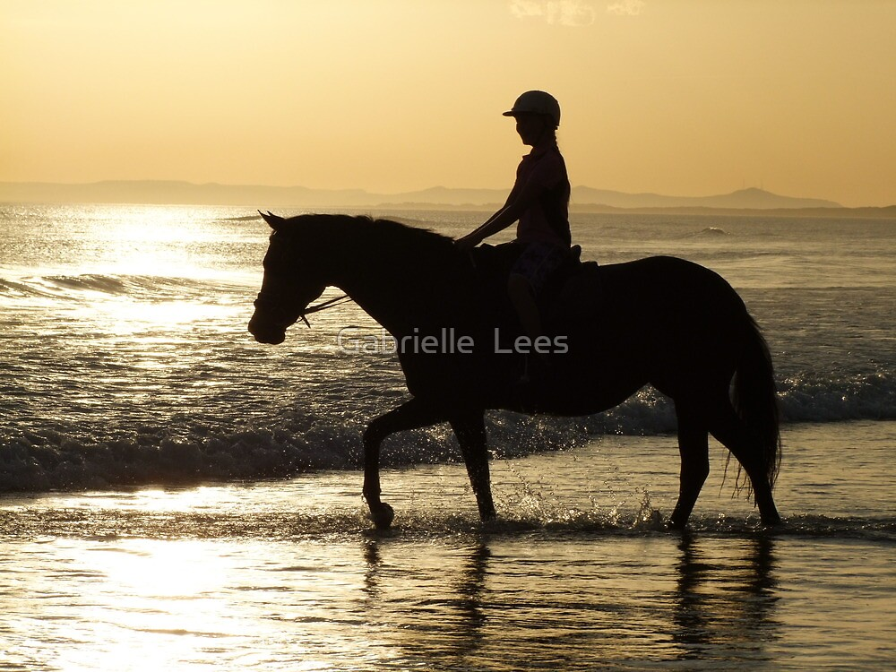 Sunset Rider by Gabrielle  Lees