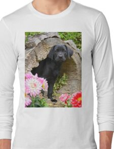 Lab puppy playing hide and seek Long Sleeve T-Shirt
