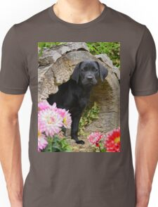 Lab puppy playing hide and seek Unisex T-Shirt