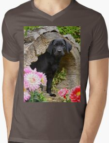 Lab puppy playing hide and seek Mens V-Neck T-Shirt
