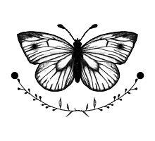 Butterfly  by TrueNoire