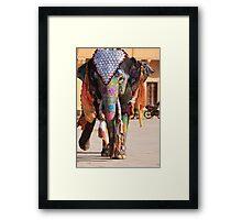 Walking Gracefully Framed Print