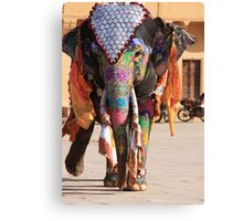 Walking Gracefully Canvas Print