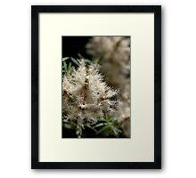 White Fireworks Framed Print