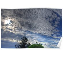 Sky over Trees Poster