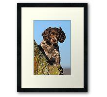 """I`m gorgerous"", German Spaniel puppy Framed Print"