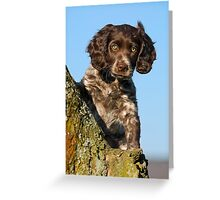 """I`m gorgerous"", German Spaniel puppy Greeting Card"