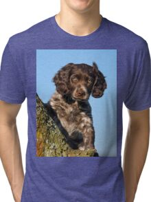 """I`m gorgerous"", German Spaniel puppy Tri-blend T-Shirt"