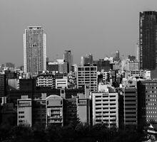 Osaka, Japan by Fike2308