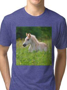 Foal in a sea of tall grass Tri-blend T-Shirt