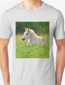 Foal in a sea of tall grass Unisex T-Shirt