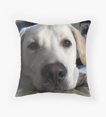 look at me  Throw Pillow