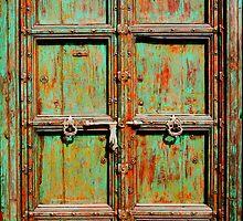 Green Door by Robyn Liebenberg