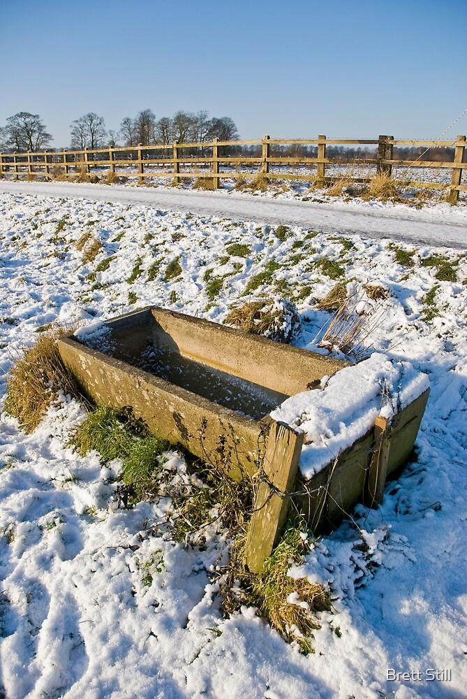 Frozen Trough by Brett Still