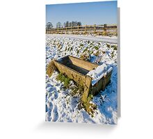 Frozen Trough Greeting Card