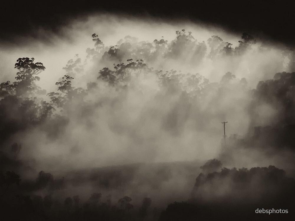 """Hidden Morning"" by debsphotos"