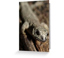Prickly forest skink Greeting Card