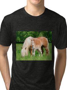 Haflinger, mom and foal Tri-blend T-Shirt