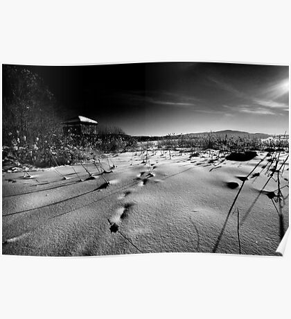 Winter In Black& White 1 Poster