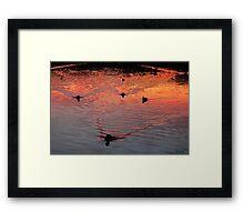 The Early Birds Framed Print