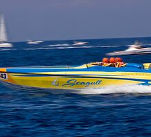 P1 Malta, Seagull overall winners by Pauls-pictures