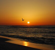 Morning Sunrise by GFORCE