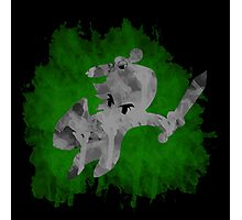 The Minish Brush Green Photographic Print