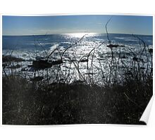 Kennebunkport, Maine - Brambles and the Sea Poster