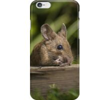 Field Mouse Eating iPhone Case/Skin