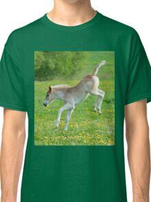 Haflinger foal frolicking Classic T-Shirt