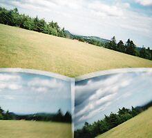 Lost in the Field by fixtape