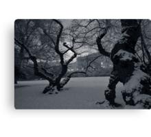 Capital Hill - Winter Plate # 2 Canvas Print