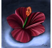 Best Fantasy Flower 3 Photographic Print
