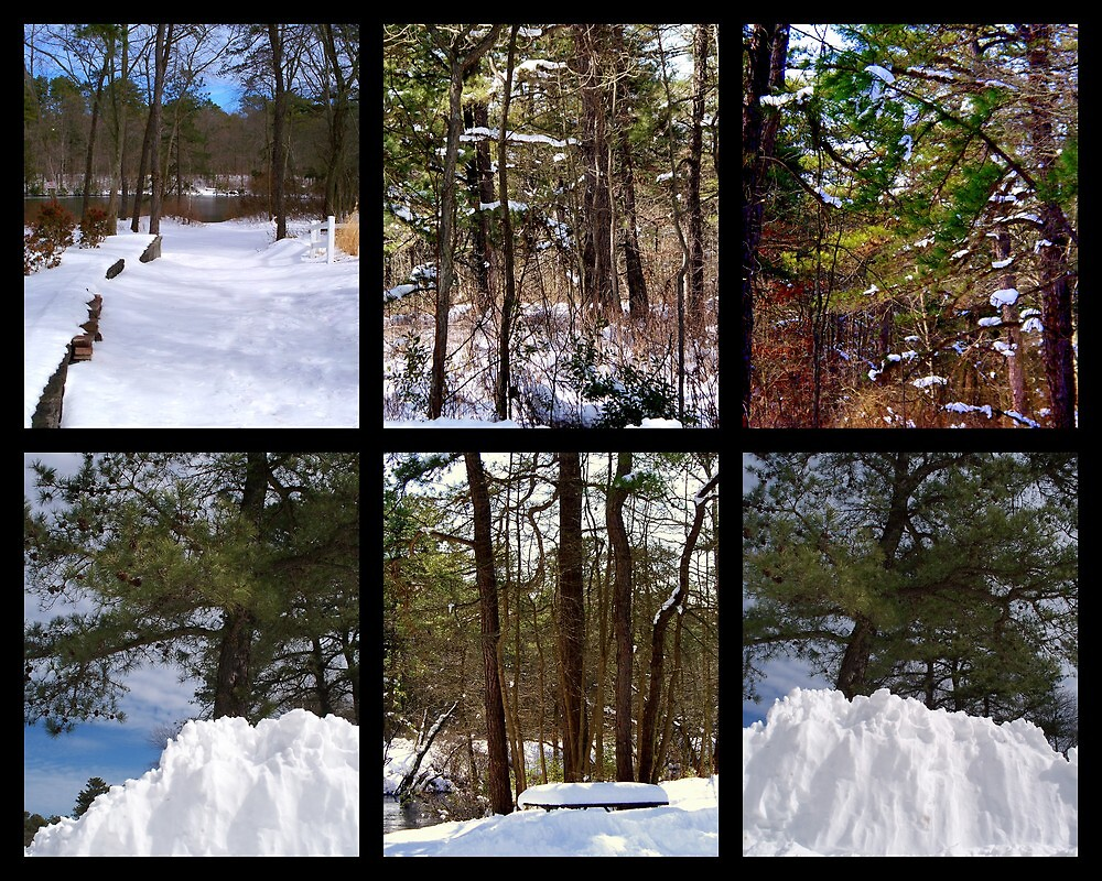 Snow-scenes  from  Winding  River  by fiat777