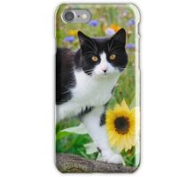 Tuxedo cat and sunflowers iPhone Case/Skin