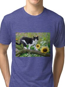 Tuxedo cat and sunflowers Tri-blend T-Shirt