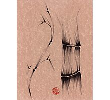 'dance'  brush pen bamboo drawing Photographic Print