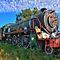 Treine, stasies, lokomotiewe, spoorlyne / Trains, stations, loco's, railway lines.